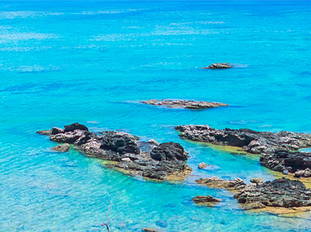 【日本沖繩】Okinawa慶良間能見50米玻璃海!吃好住好潛好 4日 7