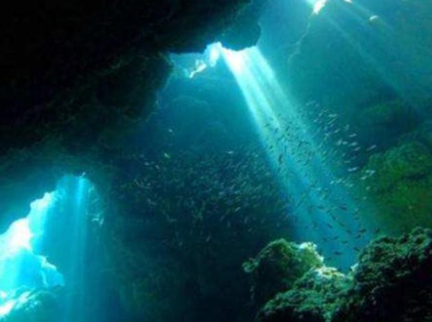 【日本沖繩】Okinawa慶良間能見50米玻璃海!吃好住好潛好 4日 3