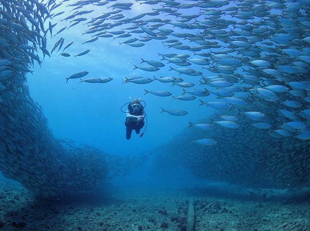 【馬里亞納塞班島】Saipan海陸空出擊!!天寧島跳島+體驗潛水玩透透|自由行6日(不含機票) 2