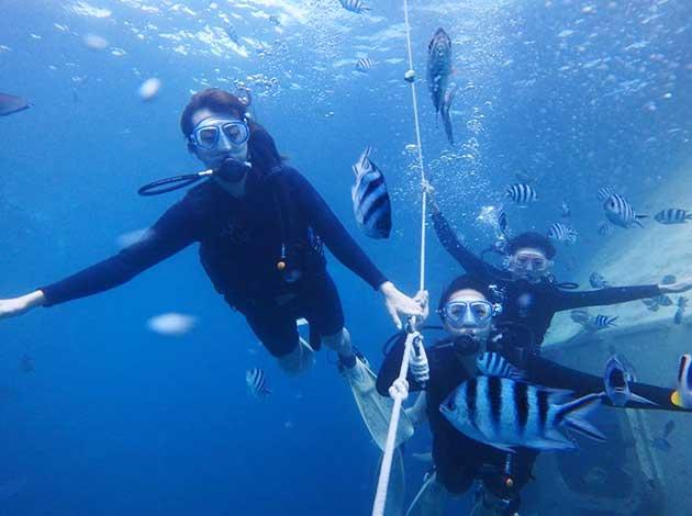 【關島Guan】來趟最美好的體驗潛水吧,關島不只免稅店!|自由行6日(不含機票,附全套潛水裝備/岸潛船潛體驗各1支) 4