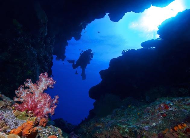 【馬來西亞西巴丹】Sipadan絕美潛水勝地,隆頭鸚哥,傑克魚風暴|5日 5