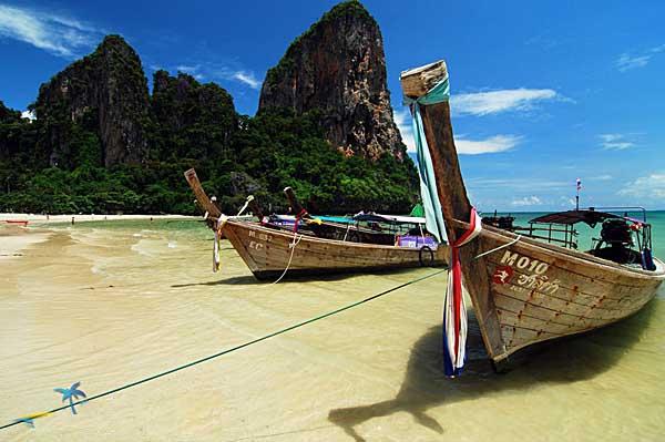 【泰國斯米蘭】Similan潛遍泰國,豹紋鯊,鯨鯊,幅魟,海狼風暴一次滿足! 自由行5日 3