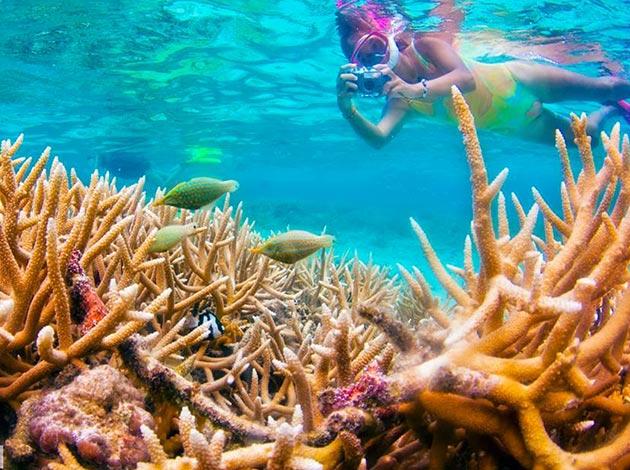 【關島Guan】來趟最美好的體驗潛水吧,關島不只免稅店!|自由行6日(不含機票,附全套潛水裝備/岸潛船潛體驗各1支) 5