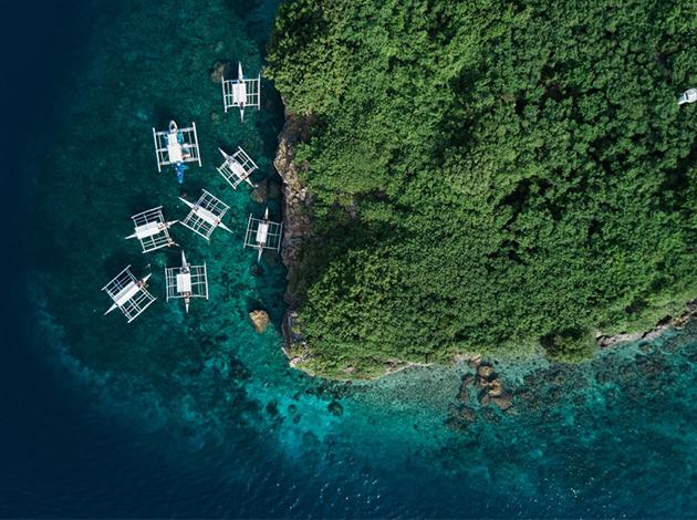 【菲律賓宿霧-墨寶】Moalboal壯麗沙丁魚風暴,入住高級渡假村|5日 1