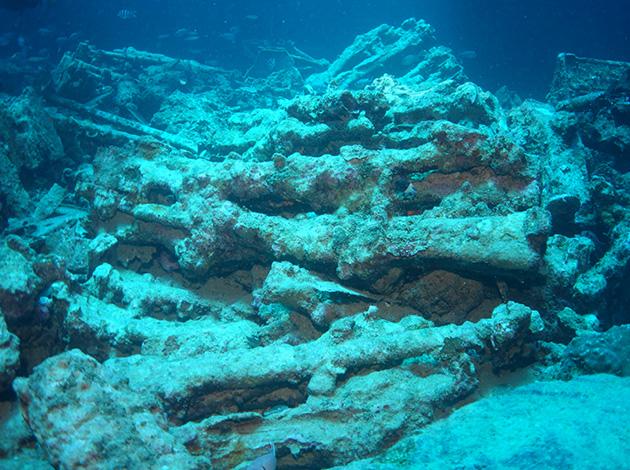 【埃及北紅海】North Red Sea金字塔豪華船宿潛水|8日 3