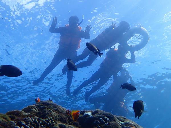 潛盟X凱撒Xsunsport-青少年水域安全體驗營6天5夜 2