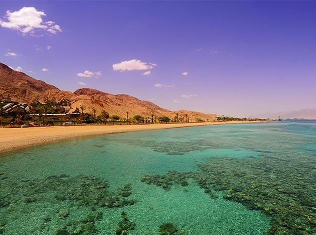 【埃及北紅海】North Red Sea金字塔豪華船宿潛水|8日 1